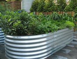 Slimline garden beds. Save your back and grow some vegies